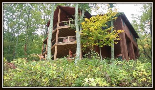 3750 Cove Mountain Rd, Sevierville, TN 37862 (#242037) :: Century 21 Legacy