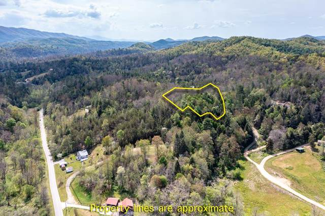 Boyd Way, Cosby, TN 37722 (#242084) :: Colonial Real Estate