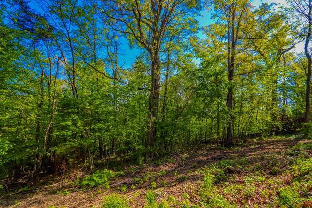 Lots 44-45 Cliffwood Dr, Newport, TN 37821 (#242089) :: Colonial Real Estate