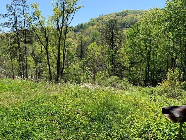 3145 Sourwood Way Lot 30 Hidden L, Sevierville, TN 37862 (#242137) :: Century 21 Legacy