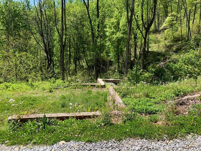 3143 Sourwood Way Lot 31 Hidden L, Sevierville, TN 37862 (#242138) :: Century 21 Legacy