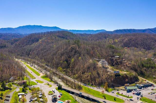 4300 Gsm Parkway Rush Branch Roa, Pigeon Forge, TN 37863 (#242143) :: Century 21 Legacy