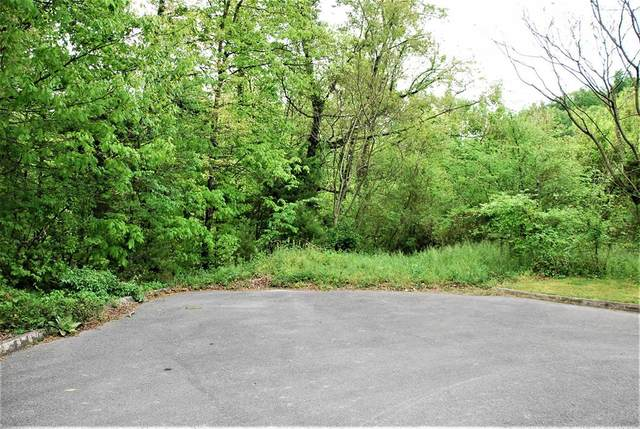 Lot 15C Frontier View Drive, Sevierville, TN 37876 (#242196) :: The Terrell-Drager Team