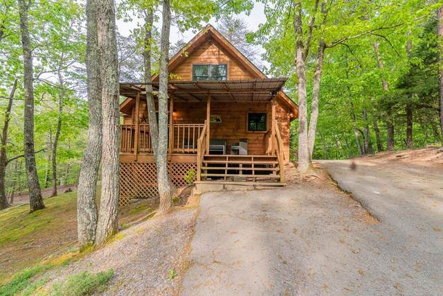 1650 S Mountain View Rd, Sevierville, TN 37876 (#242276) :: Century 21 Legacy
