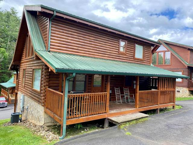 532 Blackberry Ridge Way, Pigeon Forge, TN 37863 (#242339) :: Colonial Real Estate