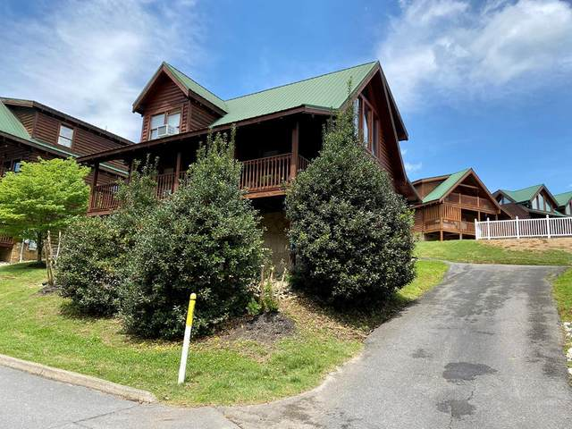 536 Blackberry Ridge Way, Pigeon Forge, TN 37863 (#242340) :: Colonial Real Estate