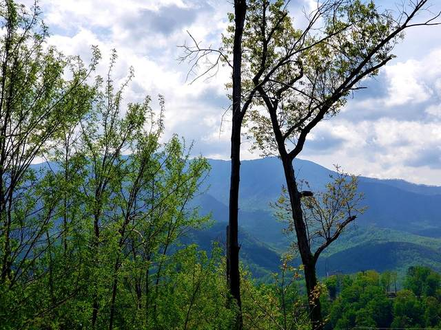 723 Bear Walk Way, Gatlinburg, TN 37738 (#242374) :: Prime Mountain Properties