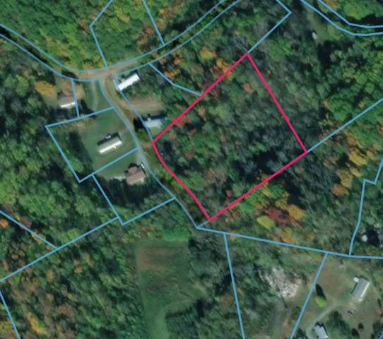 Bridges Chapel Rd, Newport, TN 37821 (#242377) :: Prime Mountain Properties