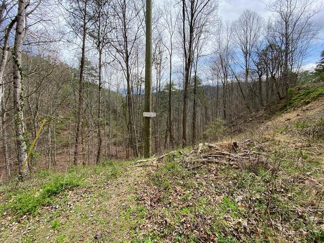 Lots 9 & 10 Patty View Way, Sevierville, TN 37862 (#242400) :: JET Real Estate