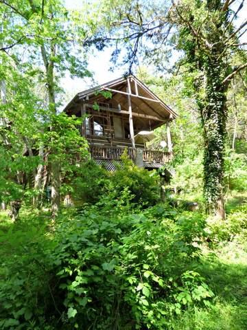 1309 Lake Front Drive, Dandridge, TN 37725 (#242454) :: Colonial Real Estate