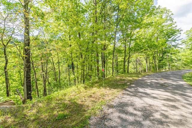 Lones Branch Ln Lot 12, Sevierville, TN 37876 (#242475) :: Colonial Real Estate