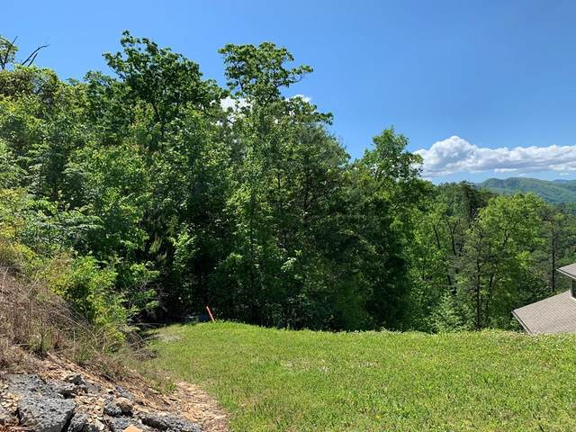 LOT 84E Redtail Road, Sevierville, TN 37862 (#242483) :: Suzanne Walls with eXp Realty