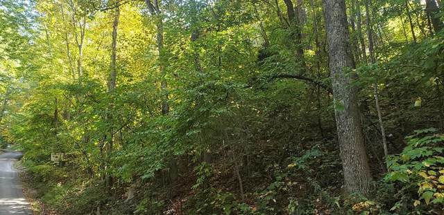 Orchard Dr Lot 832 Lot 832, Sevierville, TN 37876 (#242496) :: Suzanne Walls with eXp Realty