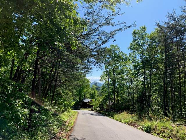 Lot 102A Shell Mtn Rd, Sevierville, TN 37876 (#242526) :: Colonial Real Estate