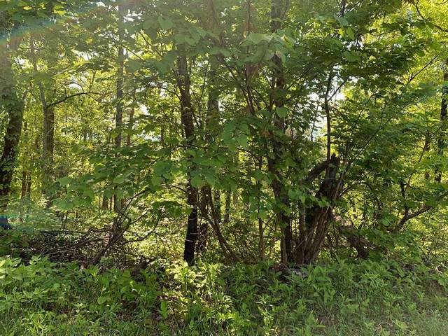 Lot 097A Shell Mtn Rd, Sevierville, TN 37876 (#242528) :: Colonial Real Estate