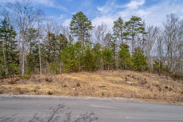 Lot 46 Emerald Pointe Blvd, Sevierville, TN 37876 (#242530) :: Colonial Real Estate