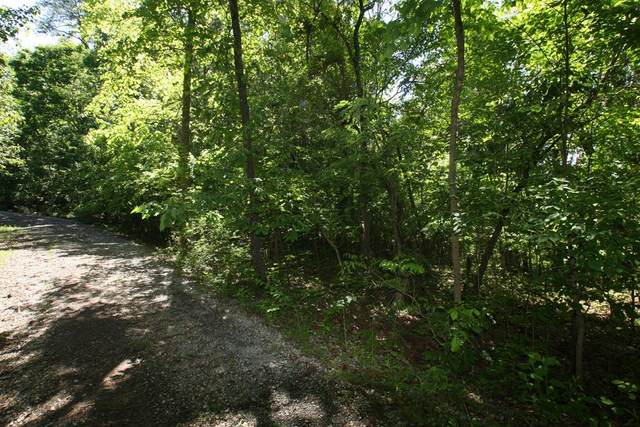 Lot 18 Sandra Way, Kodak, TN 37764 (#242558) :: Colonial Real Estate