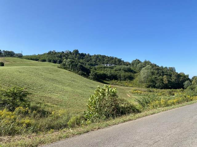 Hinchey Hollow, Jefferson City, TN 37860 (#242567) :: The Terrell-Drager Team
