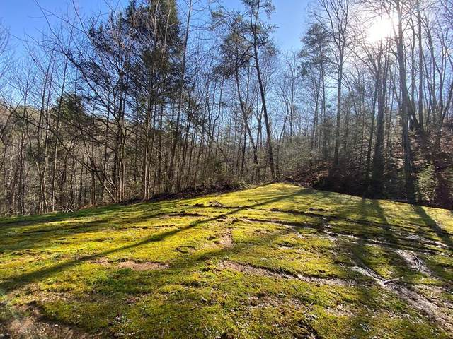 Lot 1 Mountain Dreams Way, Sevierville, TN 37862 (#242579) :: The Terrell-Drager Team