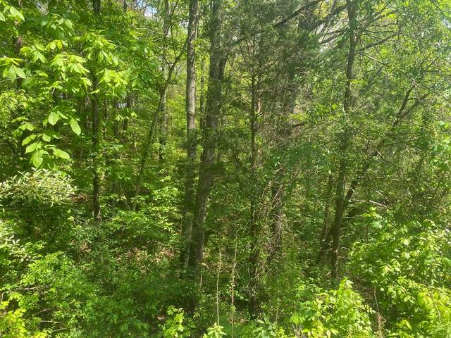 Lot Tr-1 Sugar Loaf Road, Sevierville, TN 37876 (#242629) :: Century 21 Legacy