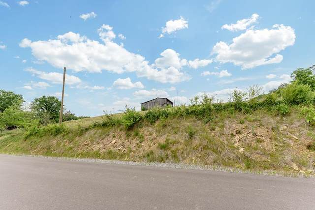 Lot Tr 6 Terry Rd, Sevierville, TN 37876 (#242640) :: The Terrell-Drager Team