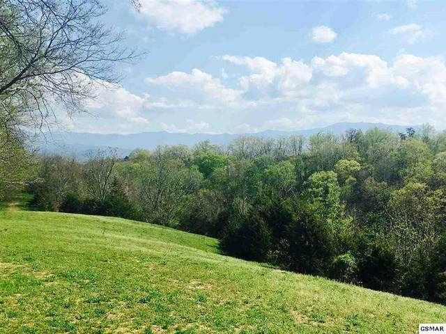 Parcel 041.0 Red Bud Lane, Sevierville, TN 37876 (#242673) :: Century 21 Legacy