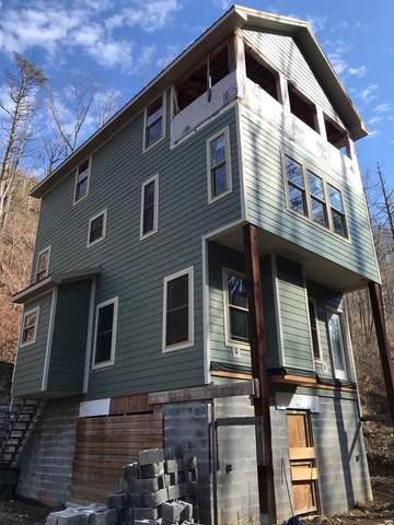 569 Baskins Creek Road, Gatlinburg, TN 37738 (#242730) :: JET Real Estate