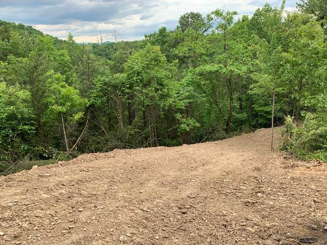Lot 24 Engle Town Rd, Sevierville, TN 38762 (#242748) :: Colonial Real Estate