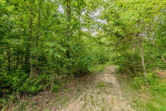 E Governor John Sevier Hwy, Knoxville, TN 37920 (#242809) :: Colonial Real Estate