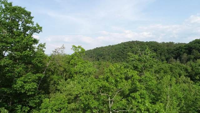 Lot 65 Smoky Cove Rd, Sevierville, TN 37862 (#242812) :: JET Real Estate