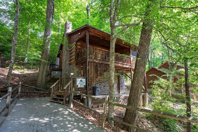 226 Tsali Way, Sevierville, TN 37876 (#242834) :: Colonial Real Estate