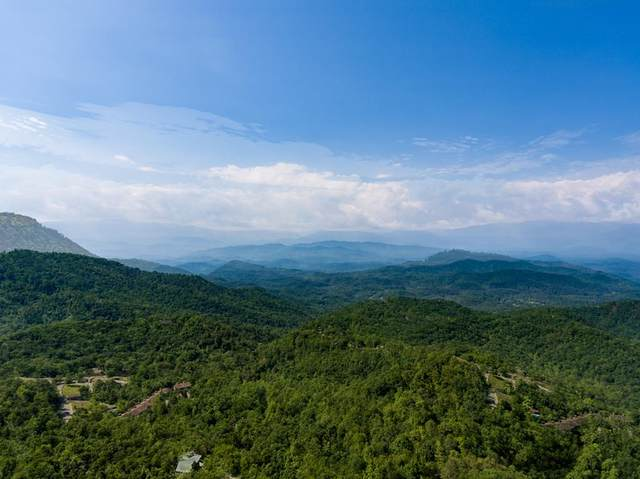 3A & 3B Alpine Dr, Sevierville, TN 37862 (#242848) :: Colonial Real Estate