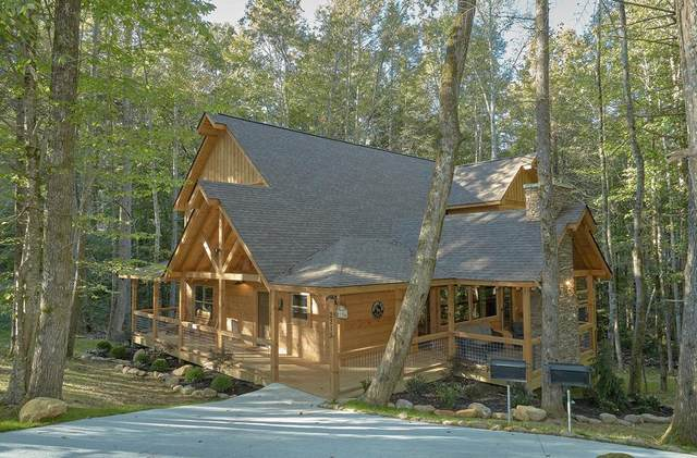 2215 Cub Circle Livin' It Up, Sevierville, TN 37862 (#242964) :: JET Real Estate