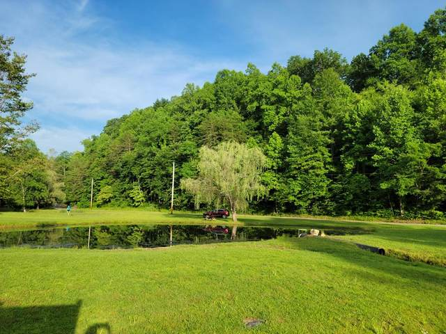 353 Lakeview Dr, Sevierville, TN 37876 (#242979) :: Suzanne Walls with eXp Realty
