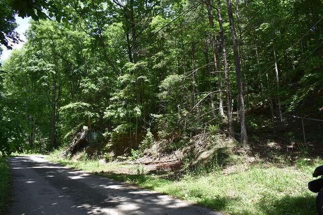 569 Ball Mountain Road, Gatlinburg, TN 37738 (#242995) :: JET Real Estate