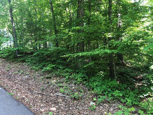 Lot 0094 Timber Lake Circle, Sevierville, TN 37876 (#243025) :: Tennessee Elite Realty