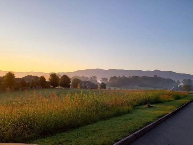 816 Majestic Mountain Blvd, Walland, TN 37886 (#243050) :: Century 21 Legacy