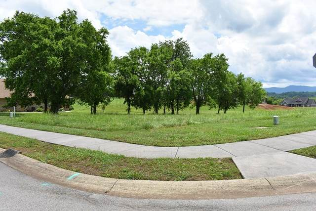 Cool Brook Ct, Sevierville, TN 37876 (#243105) :: Billy Houston Group