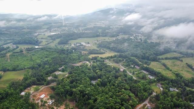 Lot 5 Murphy Farm Way, Sevierville, TN 37876 (#243121) :: The Terrell-Drager Team