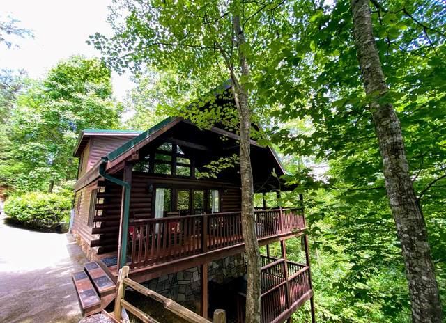 733 Yona Trail Way, Gatlinburg, TN 37738 (#243122) :: Century 21 Legacy
