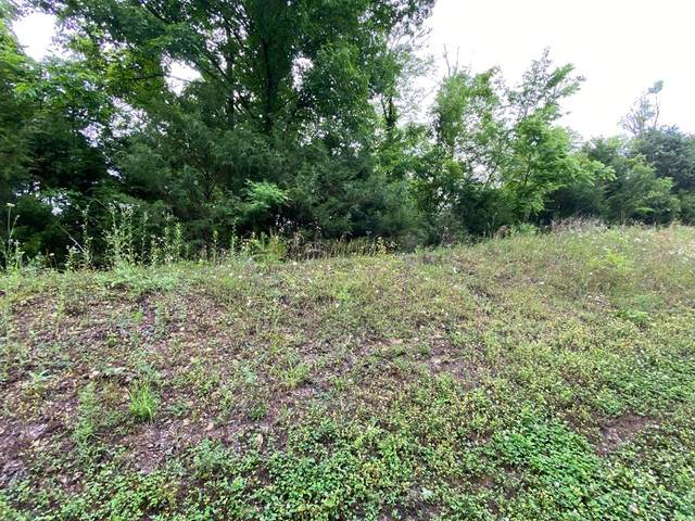 Lot 147 Eagle Feather Drive, Sevierville, TN 37876 (#243148) :: Billy Houston Group