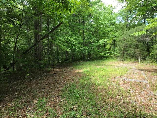 Clearview Circle, Sevierville, TN 37862 (#243179) :: Colonial Real Estate