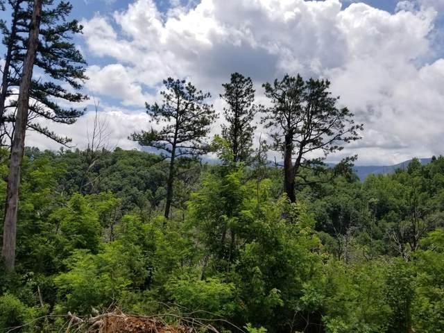 Lot 203 Dixie Ct, Gatlinburg, TN 37738 (#243188) :: Prime Mountain Properties
