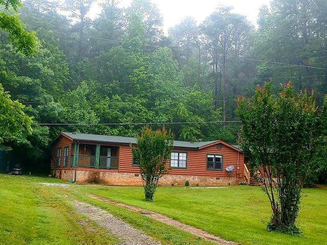 3058 Ogles View Rd, Sevierville, TN 37862 (#243252) :: Colonial Real Estate