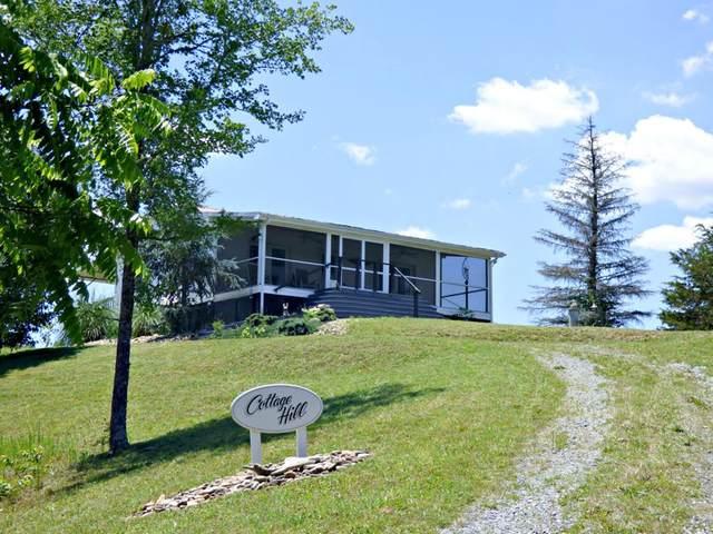 2504 Valley View Rd, Dandridge, TN 37725 (#243263) :: The Terrell-Drager Team
