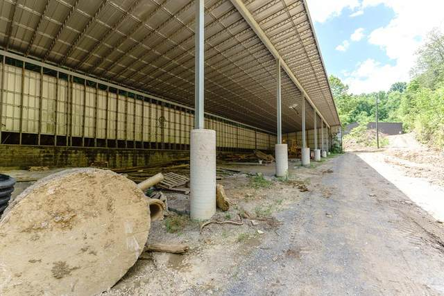 2246 Eagle Feather Drive, Sevierville, TN 37876 (#243272) :: Colonial Real Estate