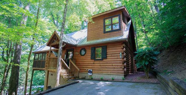 919 Cub Run Way, Sevierville, TN 37862 (#243283) :: Colonial Real Estate