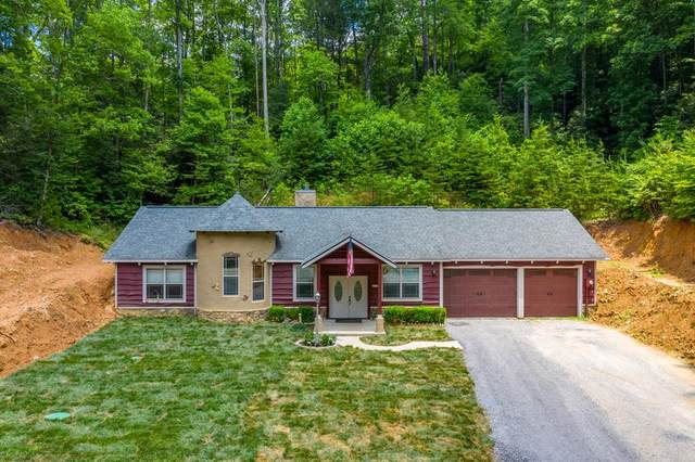 4529 Bruce Ogle Way, Pigeon Forge, TN 37863 (#243286) :: The Terrell-Drager Team
