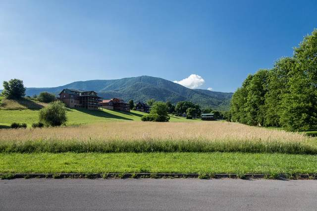 Lot 25 Cove Meadows Drive, Sevierville, TN 87862 (#243314) :: The Terrell-Drager Team