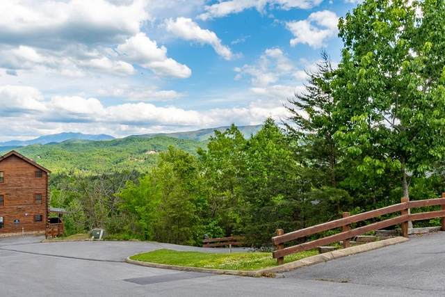 lot 16 Delta Dawn Dr, Sevierville, TN 37862 (#243326) :: Tennessee Elite Realty